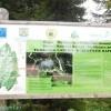 Turbăria Lăptici , Peștera Ialomiței, clor in apa de Bușteni – Drumeție prin Bucegi