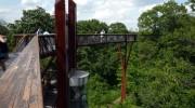 La Sinaia – două pasarele unice în România, vor fi dotate cu lift – Fonduri Europene