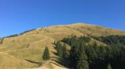 Redescoperă Munții Baiului alături de Ștafeta Munților