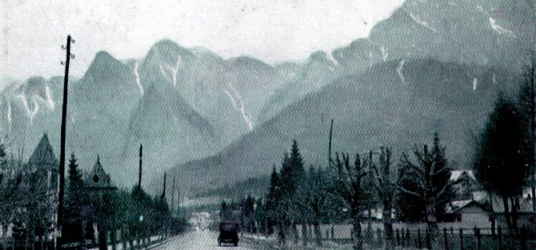 Bulevardul Carol ( azi DN 1 ) si Strada Valea Alba 1900 – 1932