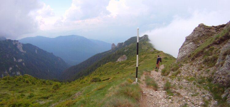 Traseu Omu – Bran prin valea Clincea
