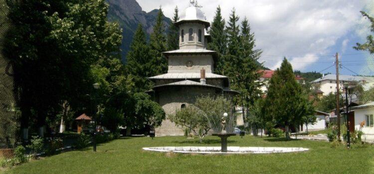 Biserica Domnească