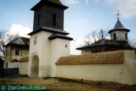 Curtea-Bozianu-1