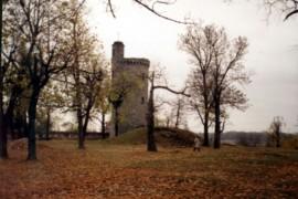 Floresti-Palatul-Micul-Trianon-4