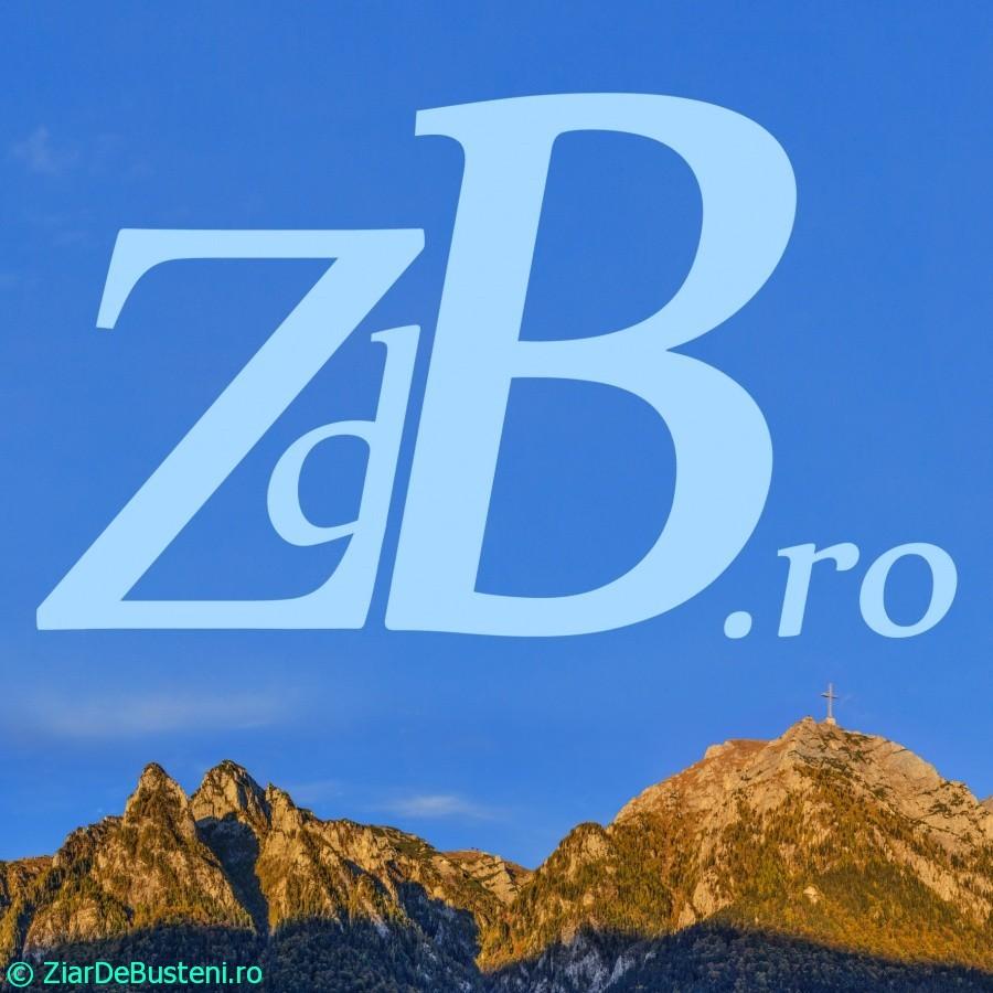 zdb_15x15cm_2