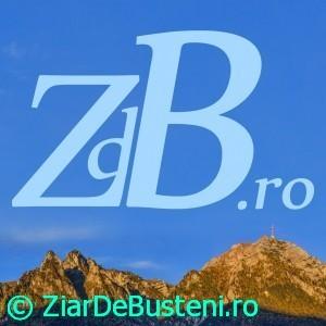 zdb_15x15cm_2-300x30025