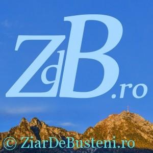 zdb_15x15cm_2-300x300