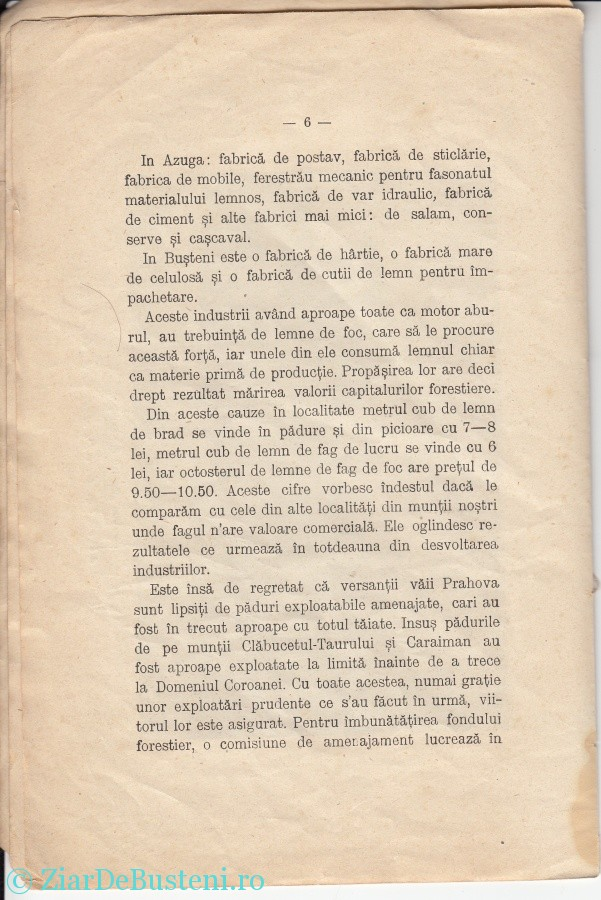 MONOGRAFIE BUSTENI 1906_0004