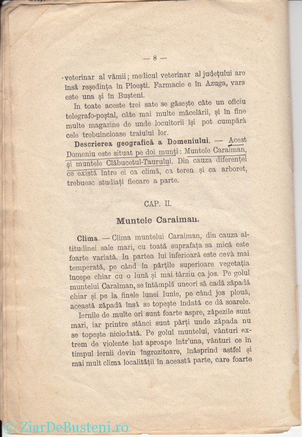 MONOGRAFIE BUSTENI 1906_0006