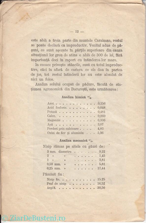MONOGRAFIE BUSTENI 1906_0010