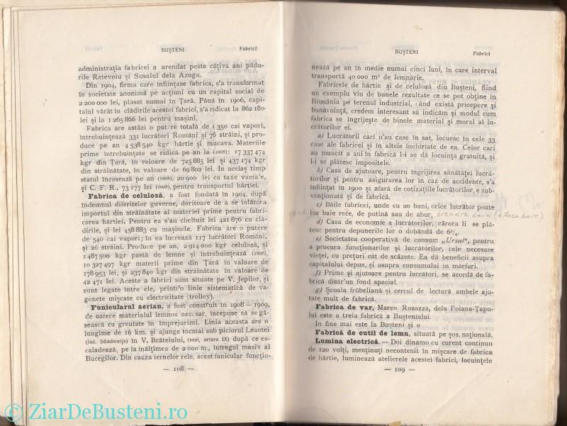 Mihai Gold 1910 Busteni_0006