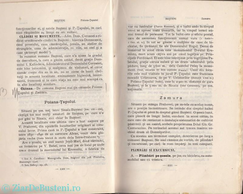 Mihai Gold 1910 Busteni_0007