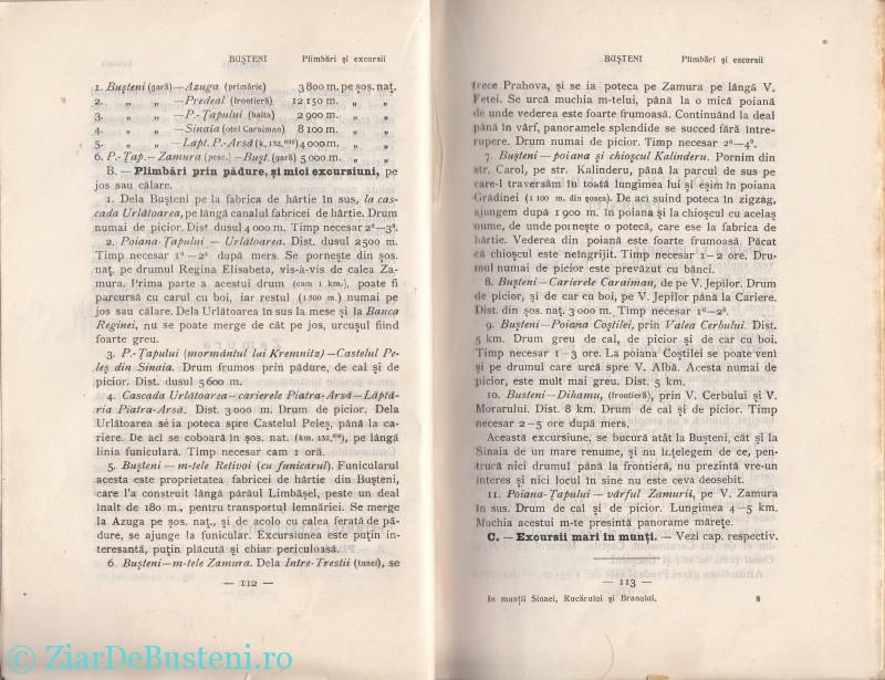 Mihai Gold 1910 Busteni_0008