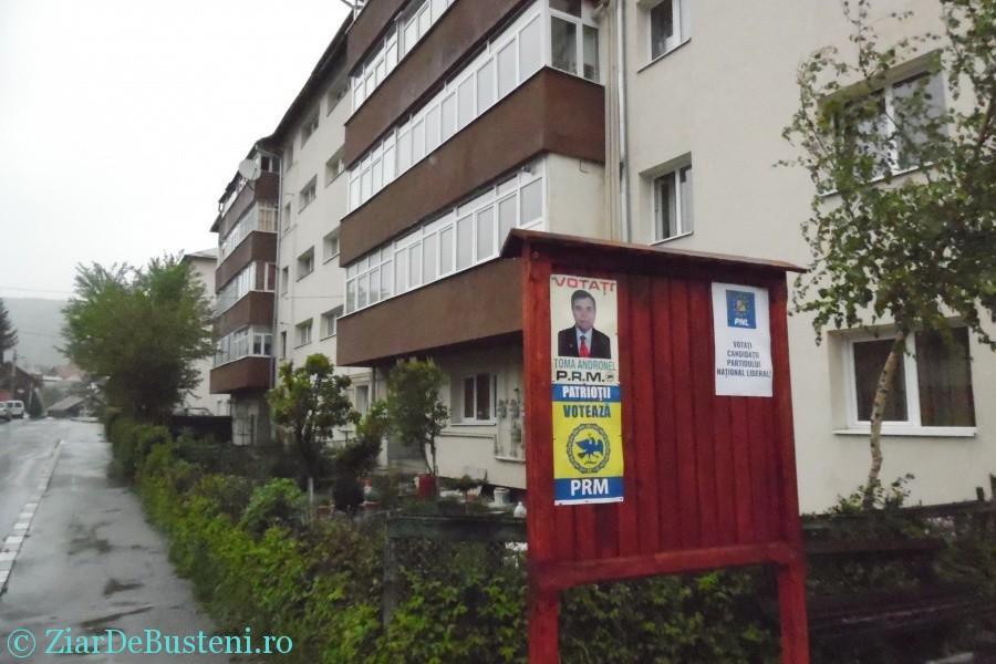 afisaj electoral 019