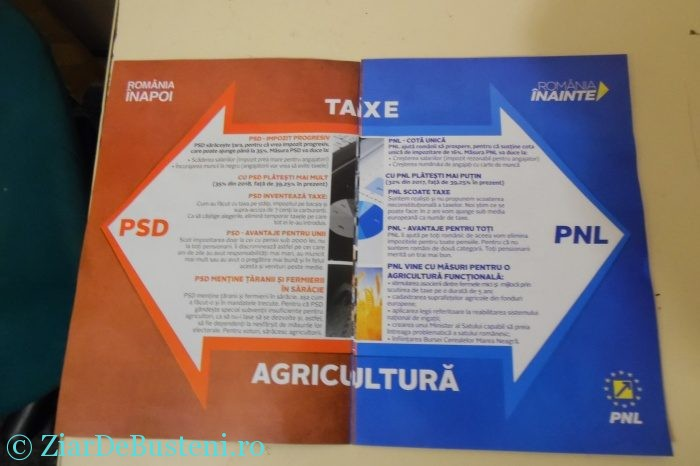 pnl-busteni-001