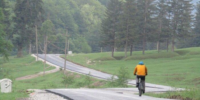 Asfalt in Valea Cerbului, eradicarea urșilor, proiecte de reabilitare, la Bușteni