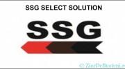 SSG Select Solution angajează Agent pază