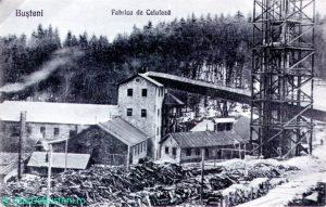 0030Fde-celuloza