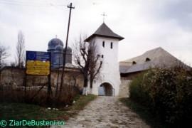 Apostolache-Manastirea-1