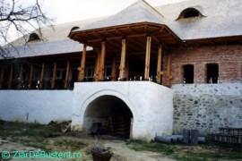 Apostolache-Manastirea-3