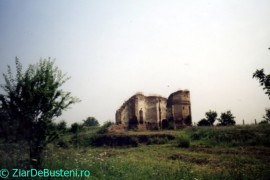 Targsor-Vechi-Bis-Alba-2