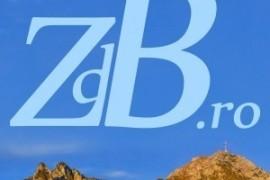 zdb_15x15cm_2-300x30022