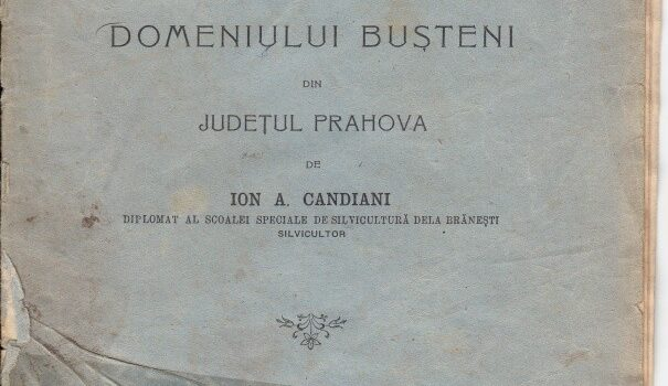 MONOGRAFIE-BUSTENI-1906