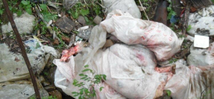 Atac la siguranța sanitară la Bușteni – pericol iminent de boli infectioase – Organele abilitate nu iau nicio măsură