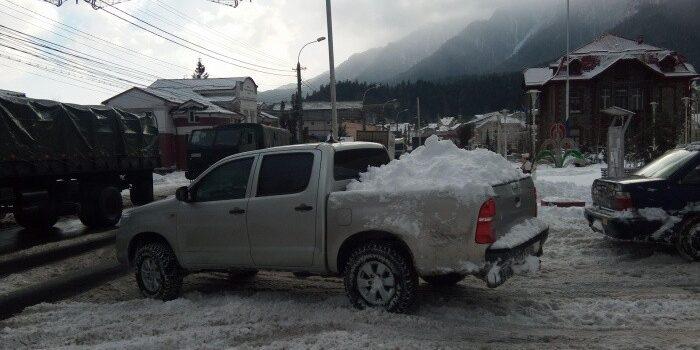 Bușteniul sub zăpada de vară