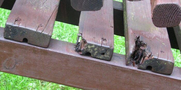 Vacanța de vară la Bușteni și moțul de la bască