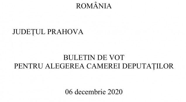 Buletinele de vot pentru Parlamentare, Busteniul are 6 candidati pe liste